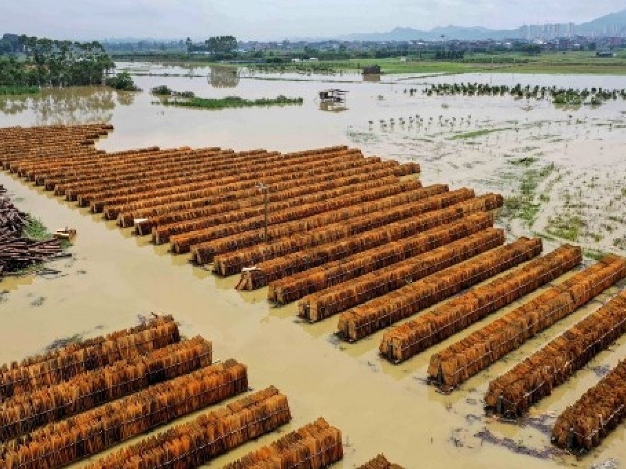 A flooded timber mill after heavy rains in Rongan, in southern Guangxi. Rain in some parts of central and southern China has hit record highs in recent weeks. File photo: AFP