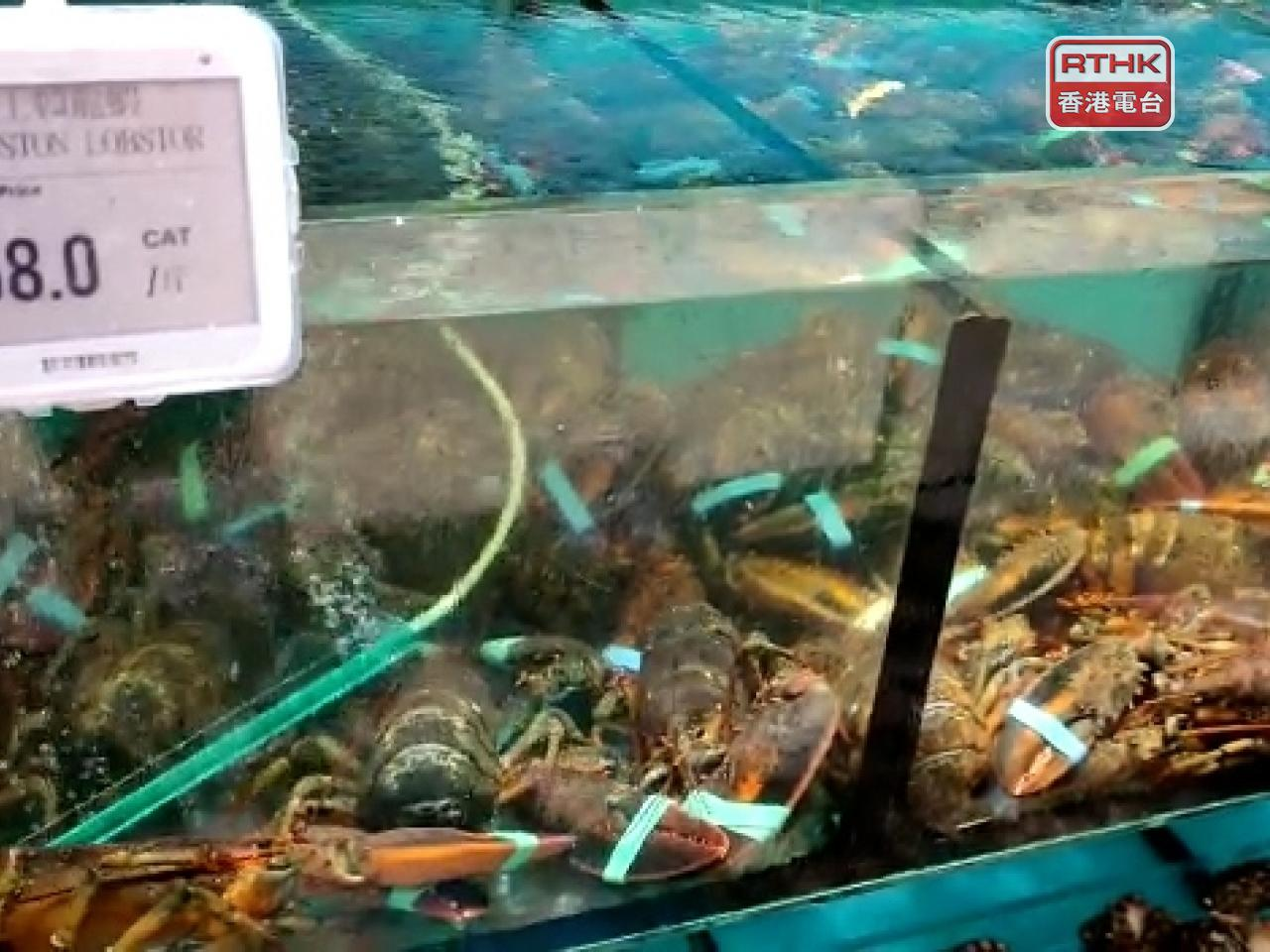 WWF-Hong Kong urges the public to avoid eating Boston lobster as a way to save the environment. Photo: RTHK