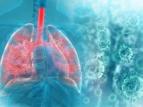 新型肺炎疫情